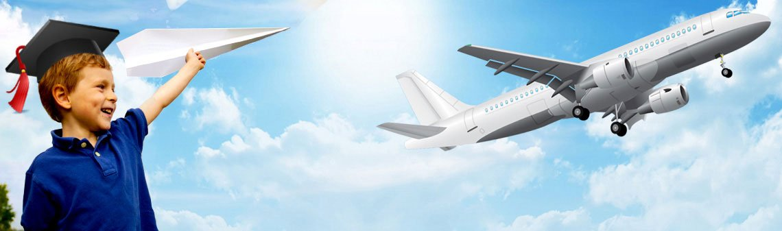 Institutes offering  course from Aviation studies